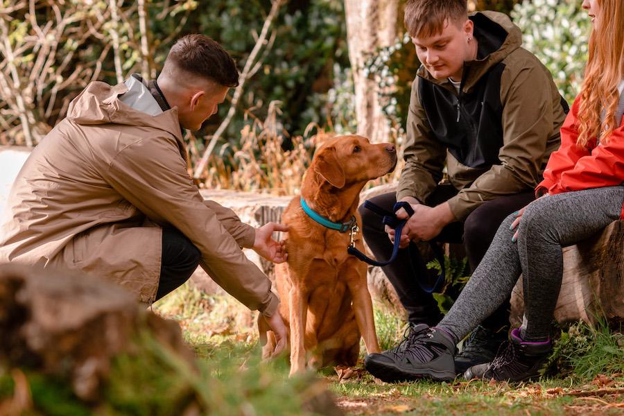 Jack's Alt-Stays Rudi the Dog