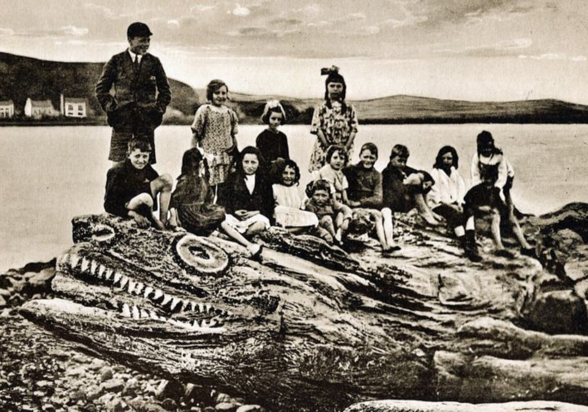 Crocodile Rock, Millport, Isle of Cumbrae