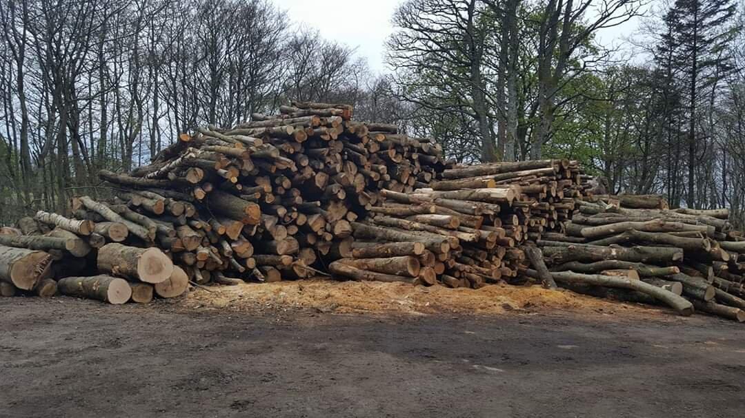 Fairlie Wood Fuels Wood